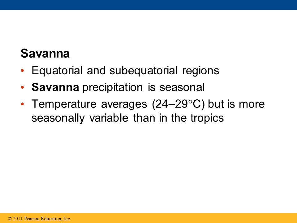 Savanna Equatorial and subequatorial regions