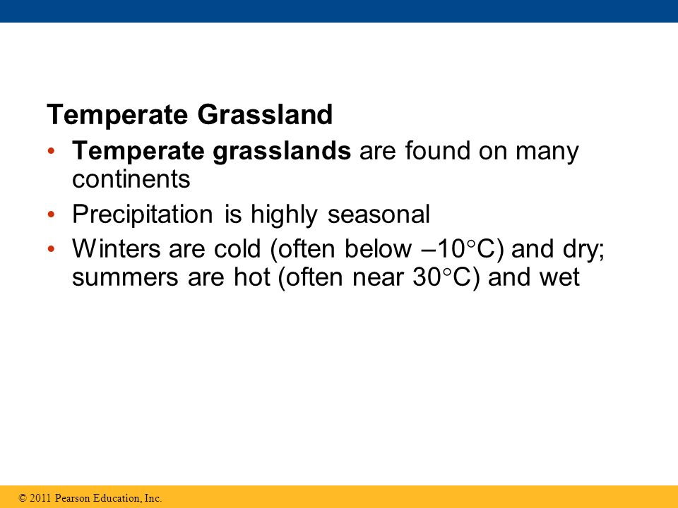 Temperate Grassland Temperate grasslands are found on many continents