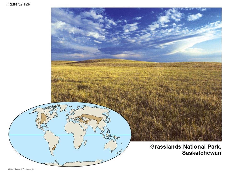 Grasslands National Park, Saskatchewan