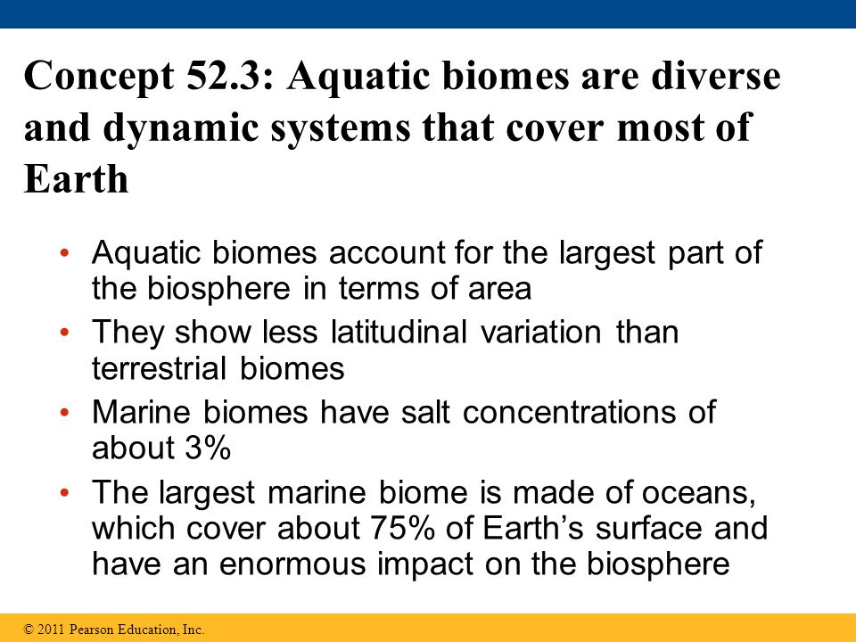 Concept 52.3: Aquatic biomes are diverse and dynamic systems that cover most of Earth