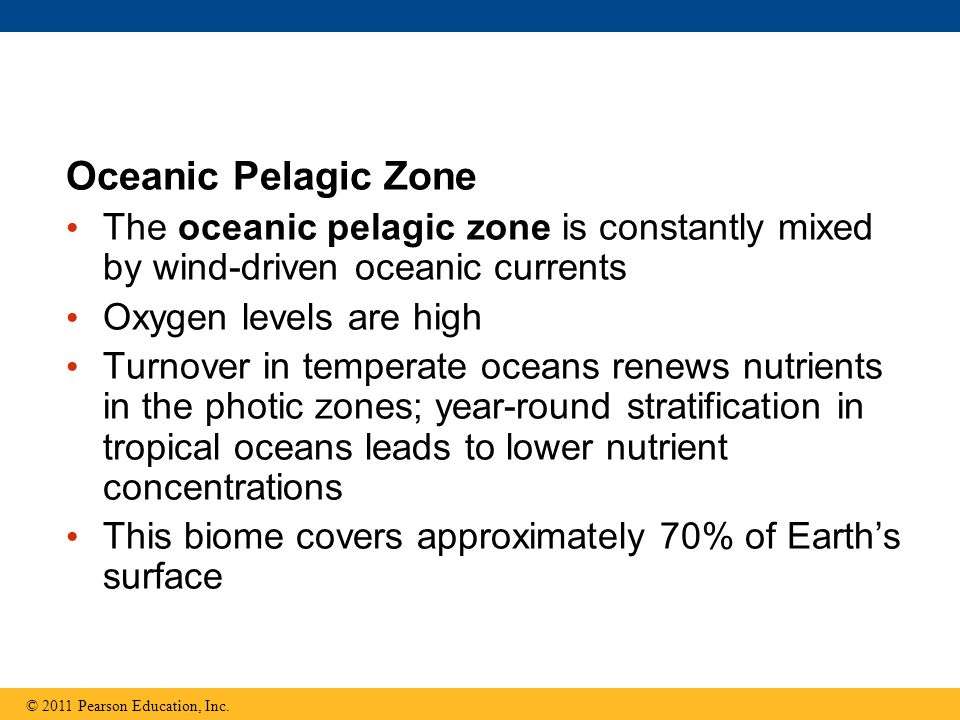 Oceanic Pelagic Zone The oceanic pelagic zone is constantly mixed by wind-driven oceanic currents. Oxygen levels are high.