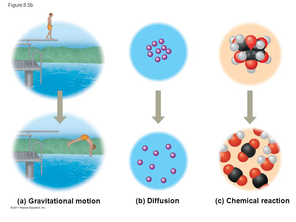 (a) Gravitational motion (b) Diffusion (c) Chemical reaction