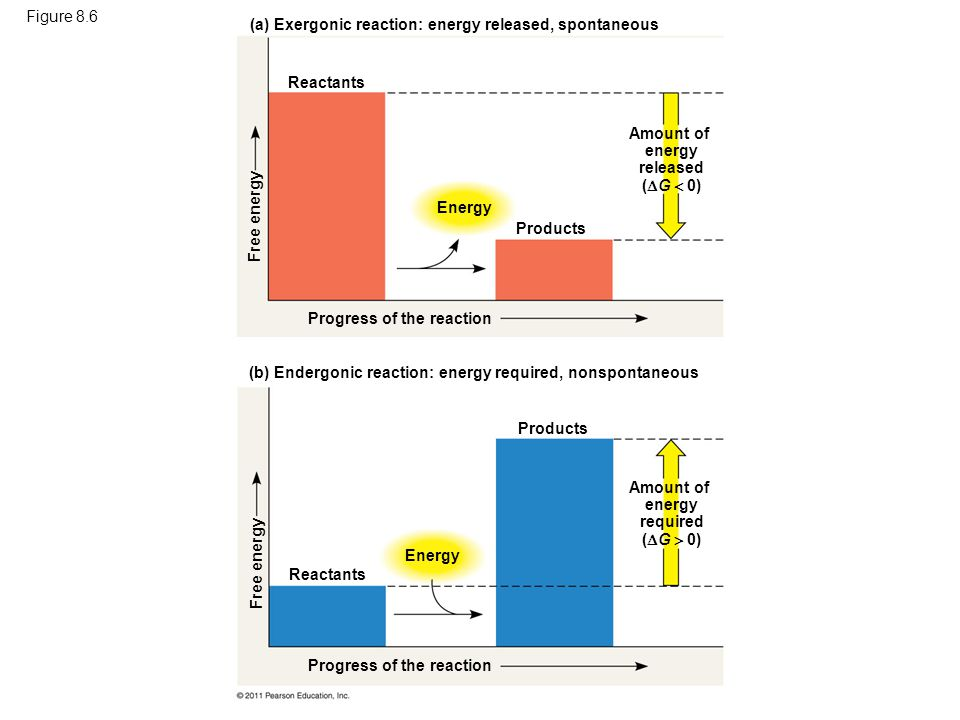 Amount of energy released (G  0) Amount of energy required (G  0)