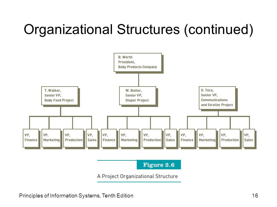 Organizational Structures (continued)