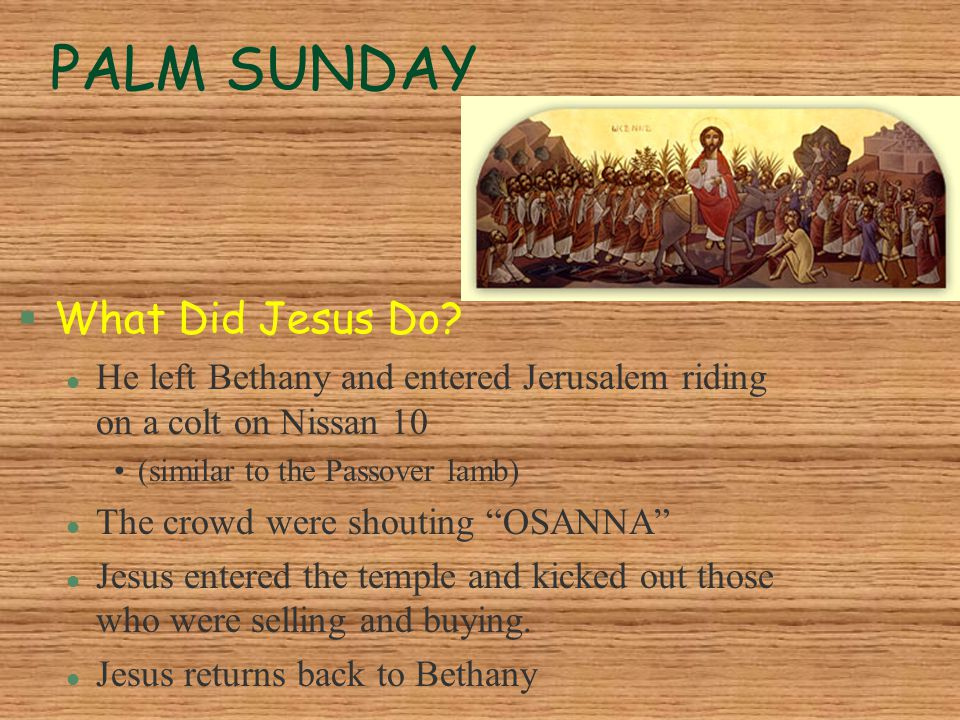 PALM SUNDAY What Did Jesus Do