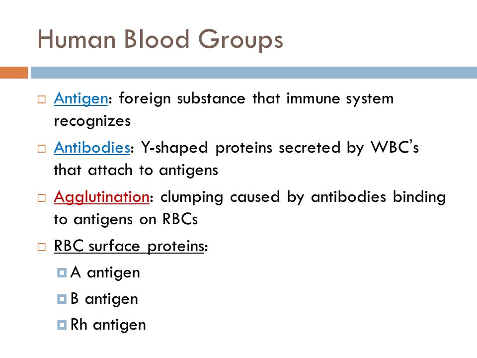 Human Blood Groups Antigen: foreign substance that immune system recognizes.
