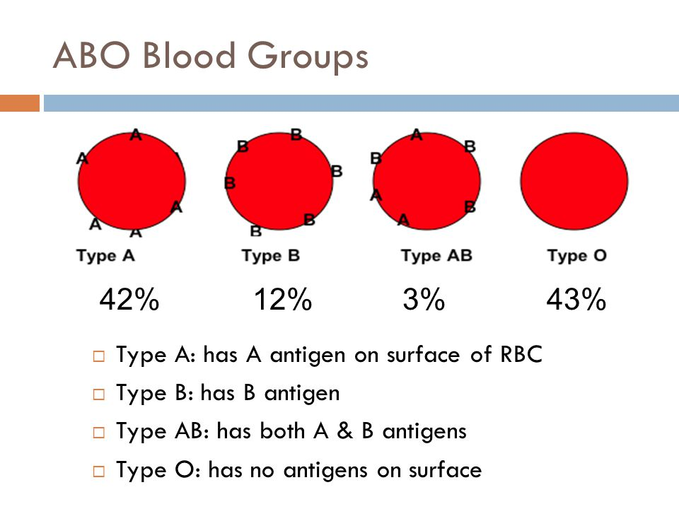 ABO Blood Groups 42% 12% 3% 43% Type A: has A antigen on surface of RBC. Type B: has B antigen.