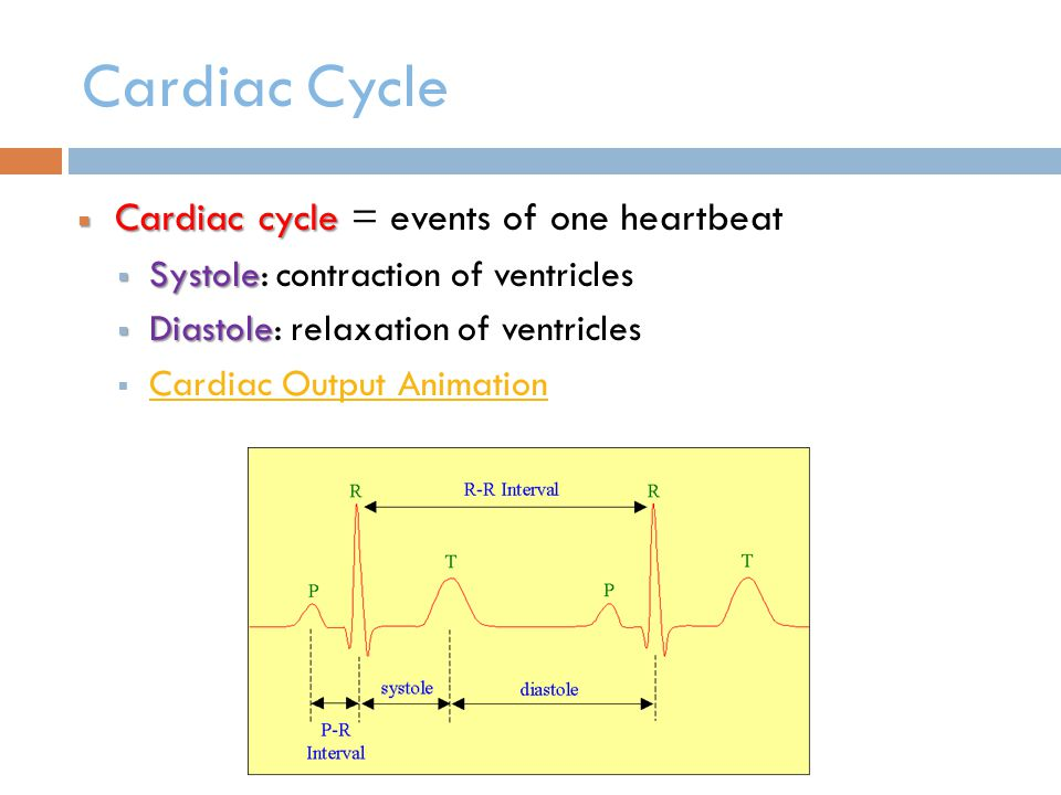 Cardiac Cycle Cardiac cycle = events of one heartbeat