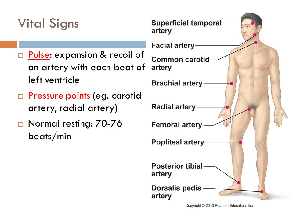 Vital Signs Pulse: expansion & recoil of an artery with each beat of left ventricle. Pressure points (eg. carotid artery, radial artery)