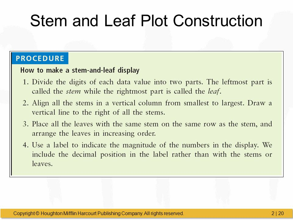 Stem and Leaf Plot Construction