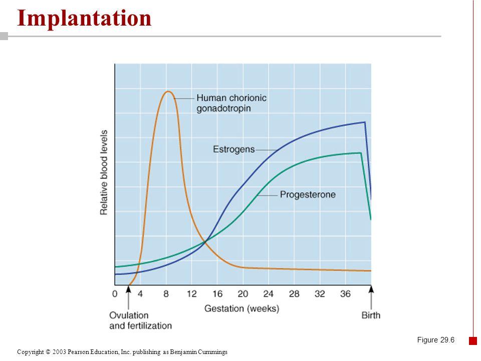 Implantation Figure 29.6