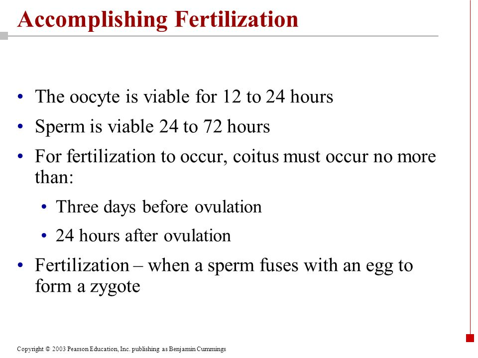 Accomplishing Fertilization