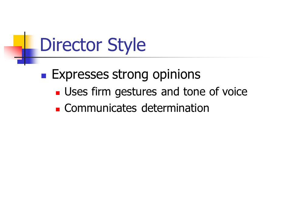 Director Style Expresses strong opinions