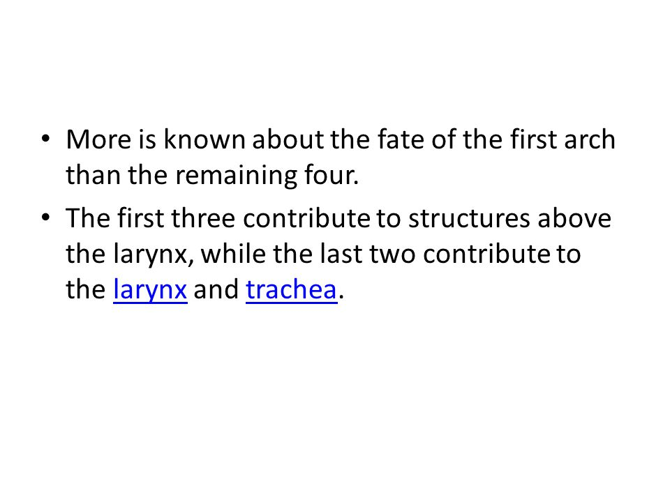 More is known about the fate of the first arch than the remaining four.