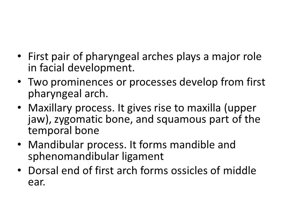 First pair of pharyngeal arches plays a major role in facial development.