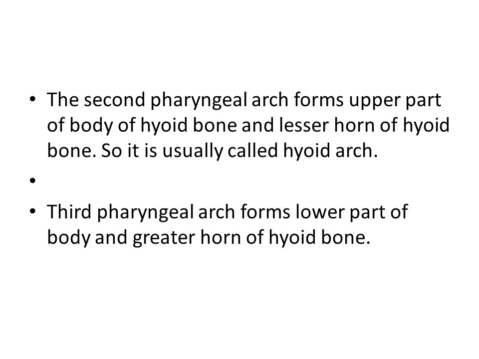 The second pharyngeal arch forms upper part of body of hyoid bone and lesser horn of hyoid bone. So it is usually called hyoid arch.