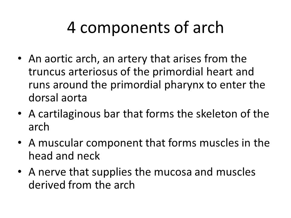 4 components of arch