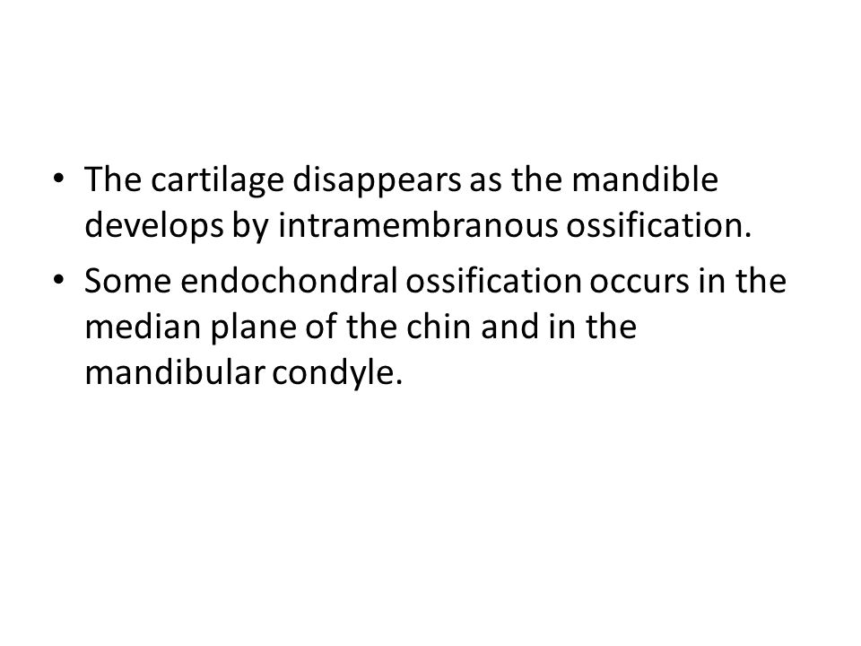 The cartilage disappears as the mandible develops by intramembranous ossification.