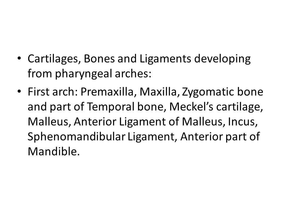 Cartilages, Bones and Ligaments developing from pharyngeal arches:
