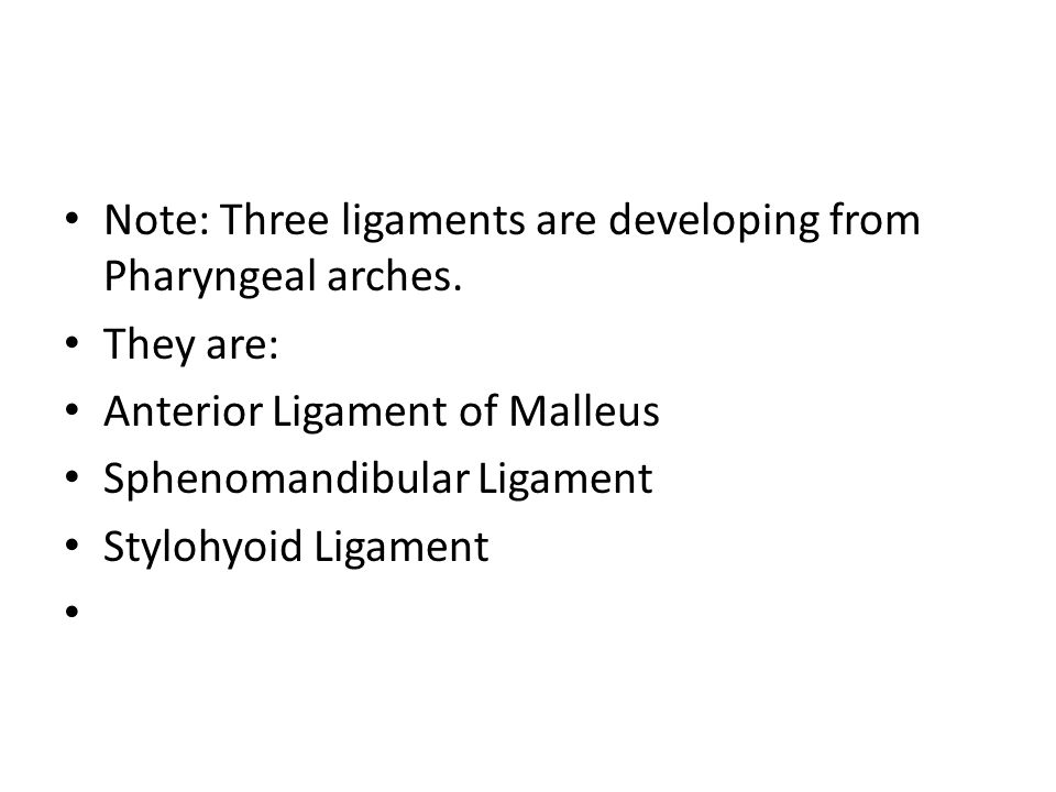 Note: Three ligaments are developing from Pharyngeal arches.