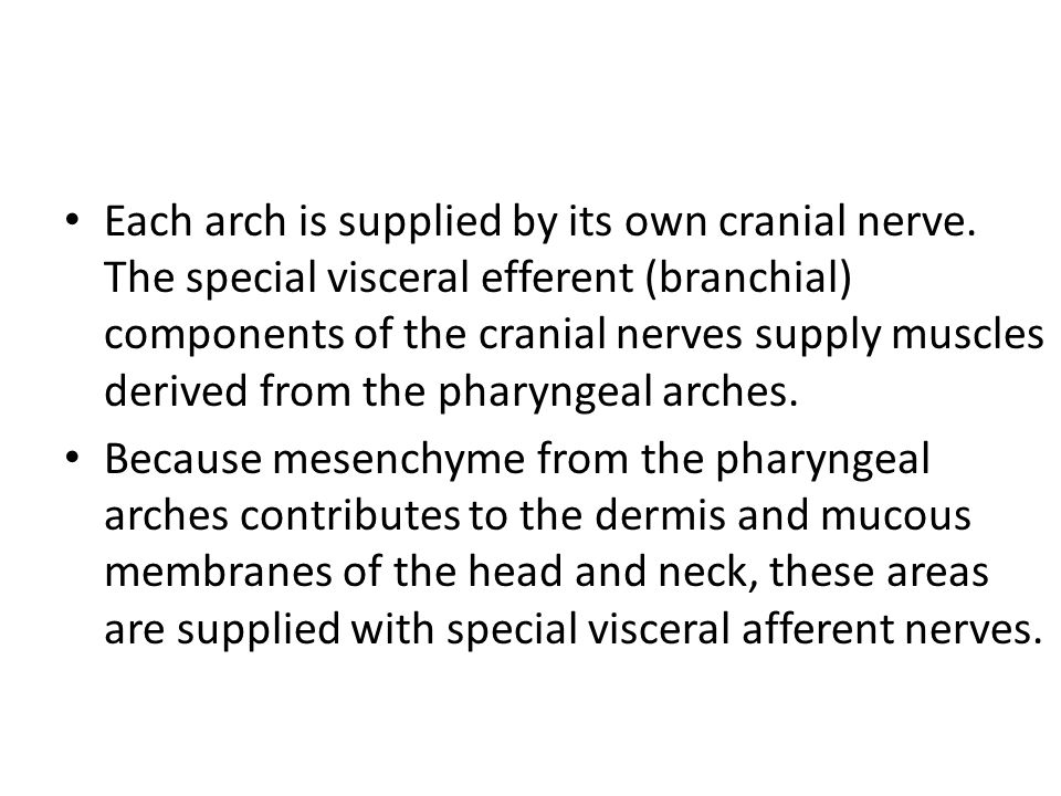 Each arch is supplied by its own cranial nerve