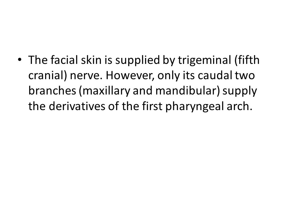 The facial skin is supplied by trigeminal (fifth cranial) nerve