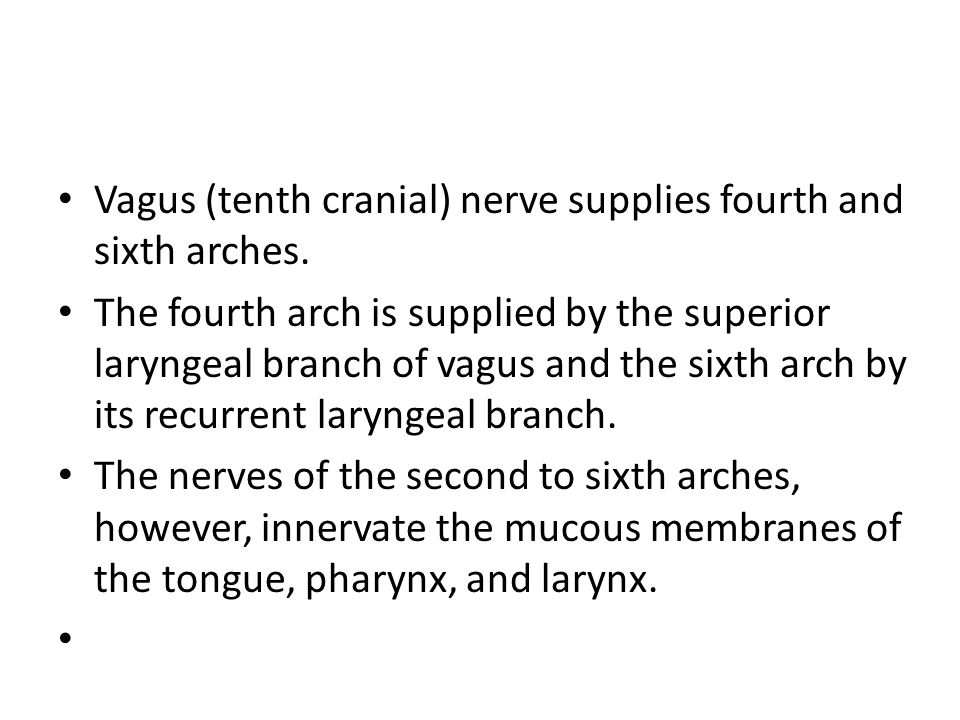 Vagus (tenth cranial) nerve supplies fourth and sixth arches.