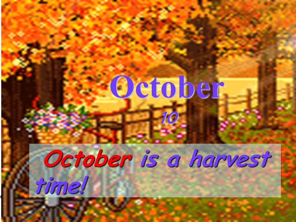 October 10 October is a harvest time!
