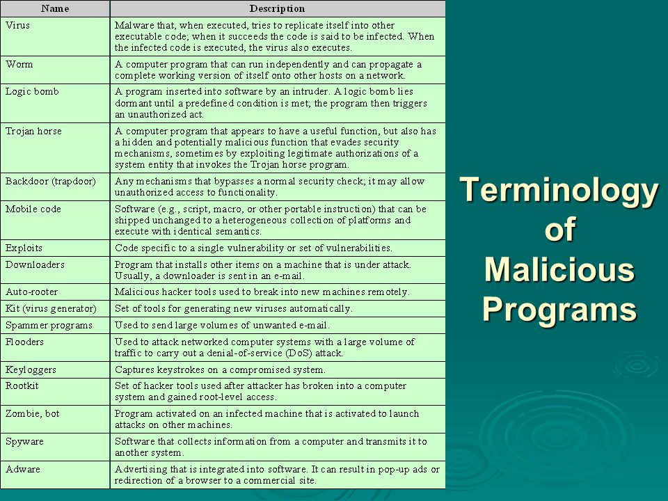 Terminology of Malicious Programs