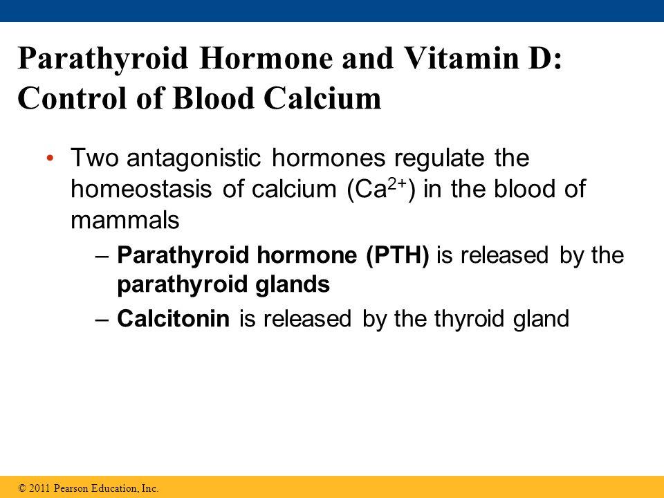 Parathyroid Hormone and Vitamin D: Control of Blood Calcium