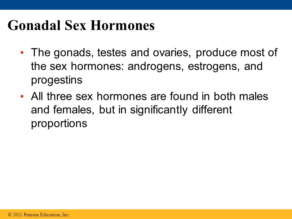 Gonadal Sex Hormones The gonads, testes and ovaries, produce most of the sex hormones: androgens, estrogens, and progestins.