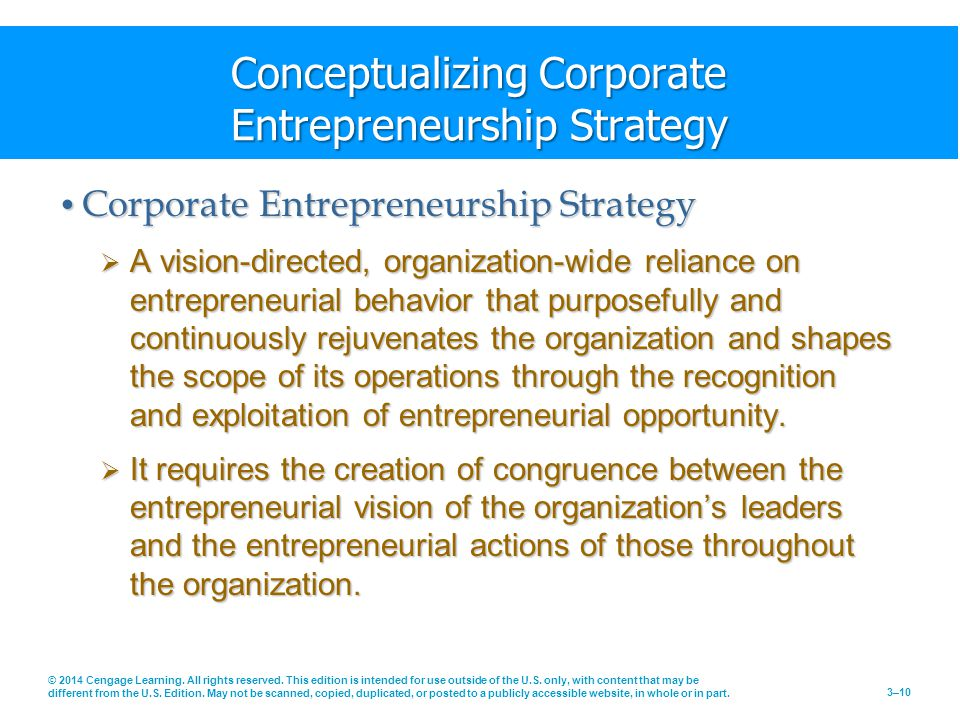 Conceptualizing Corporate Entrepreneurship Strategy