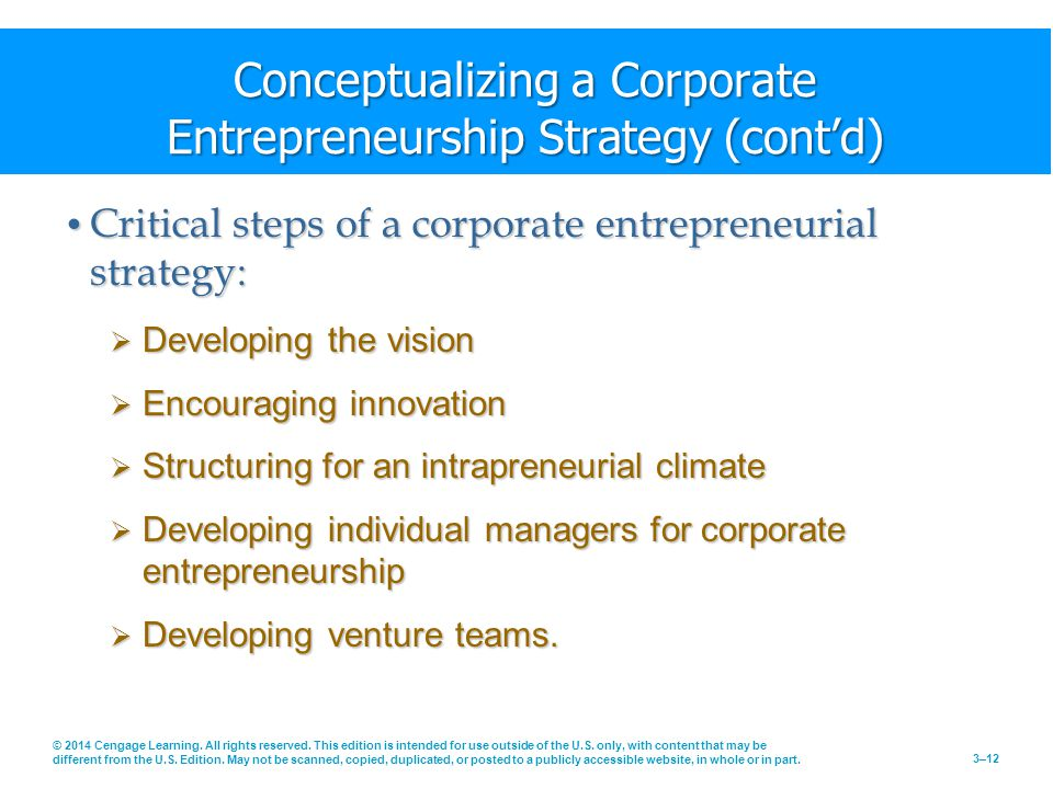 Conceptualizing a Corporate Entrepreneurship Strategy (cont'd)