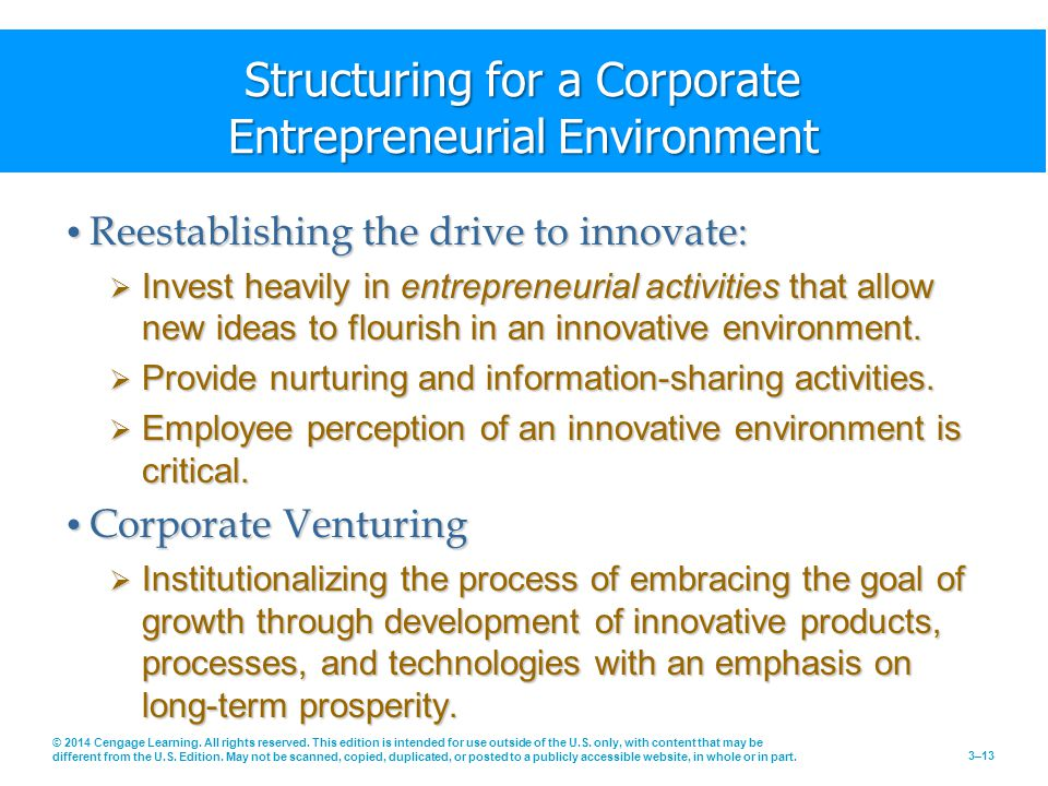 Structuring for a Corporate Entrepreneurial Environment