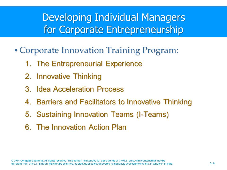 Developing Individual Managers for Corporate Entrepreneurship