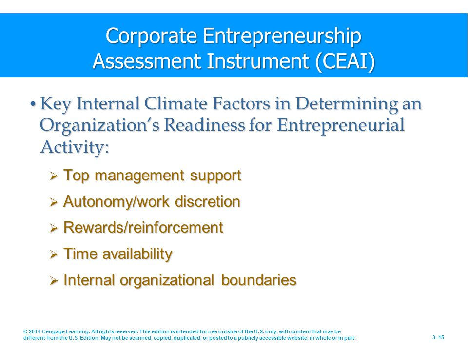 Corporate Entrepreneurship Assessment Instrument (CEAI)