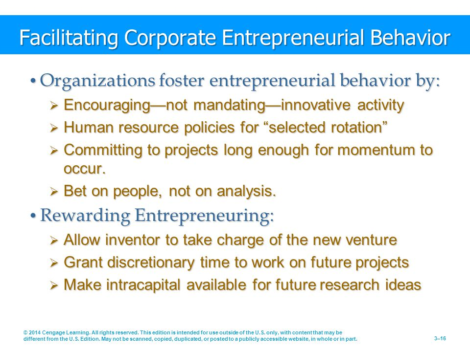 Facilitating Corporate Entrepreneurial Behavior