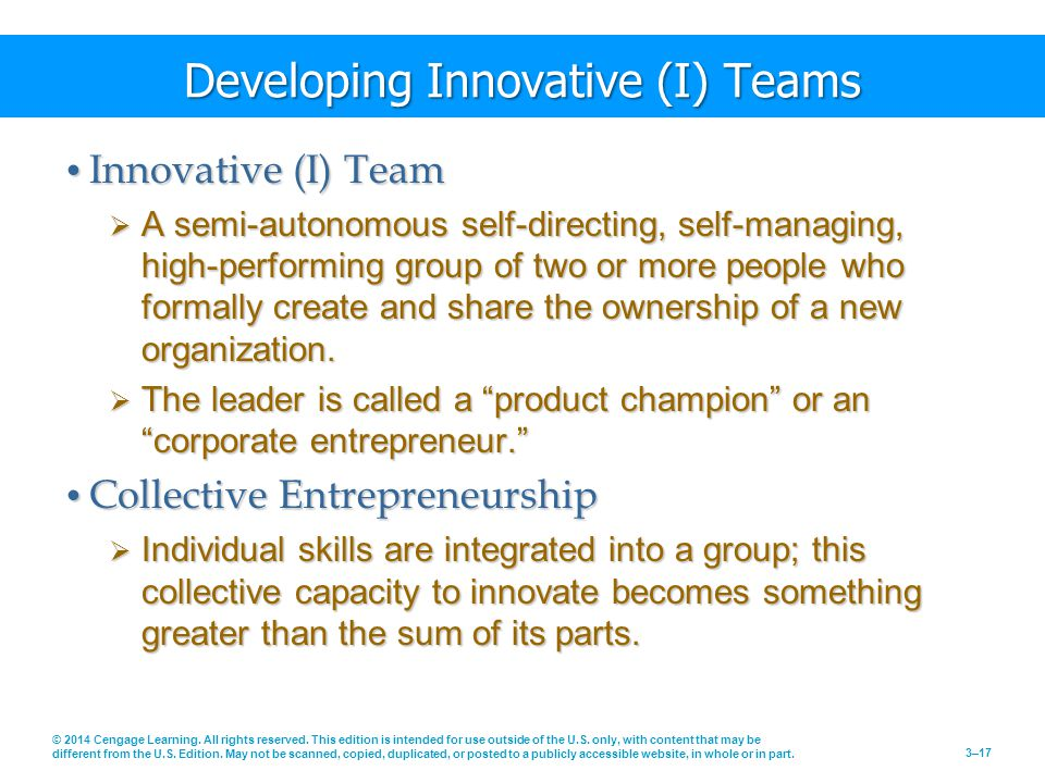 Developing Innovative (I) Teams
