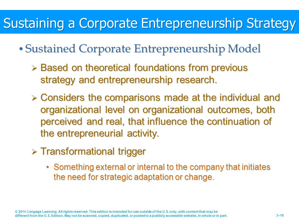 Sustaining a Corporate Entrepreneurship Strategy