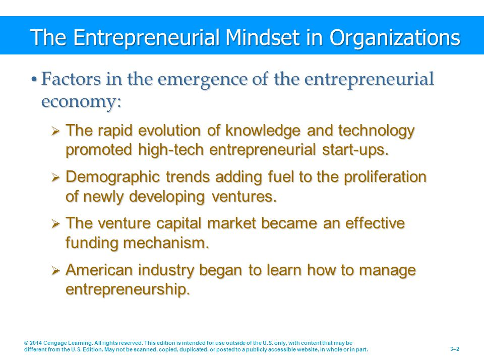 The Entrepreneurial Mindset in Organizations