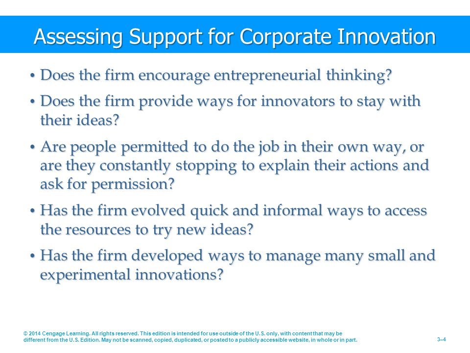 Assessing Support for Corporate Innovation