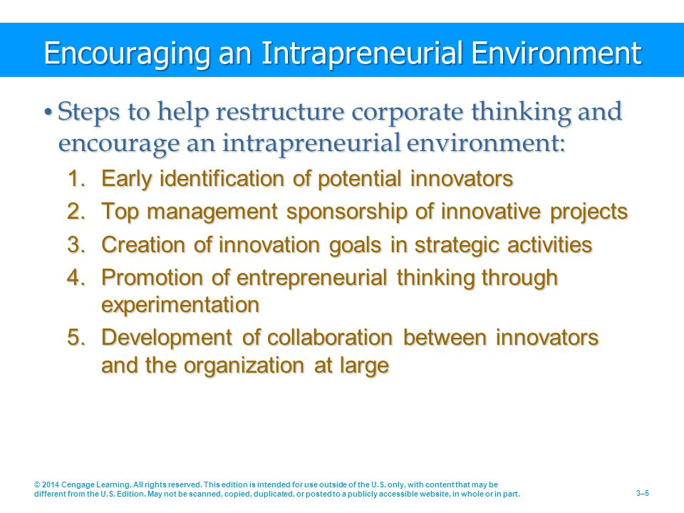 Encouraging an Intrapreneurial Environment