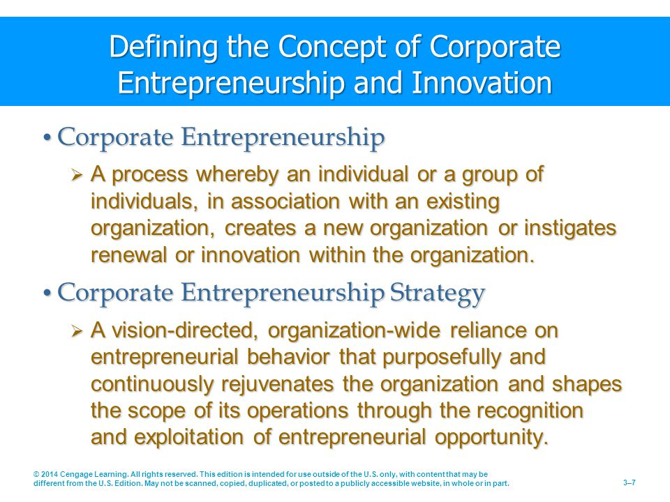 Defining the Concept of Corporate Entrepreneurship and Innovation