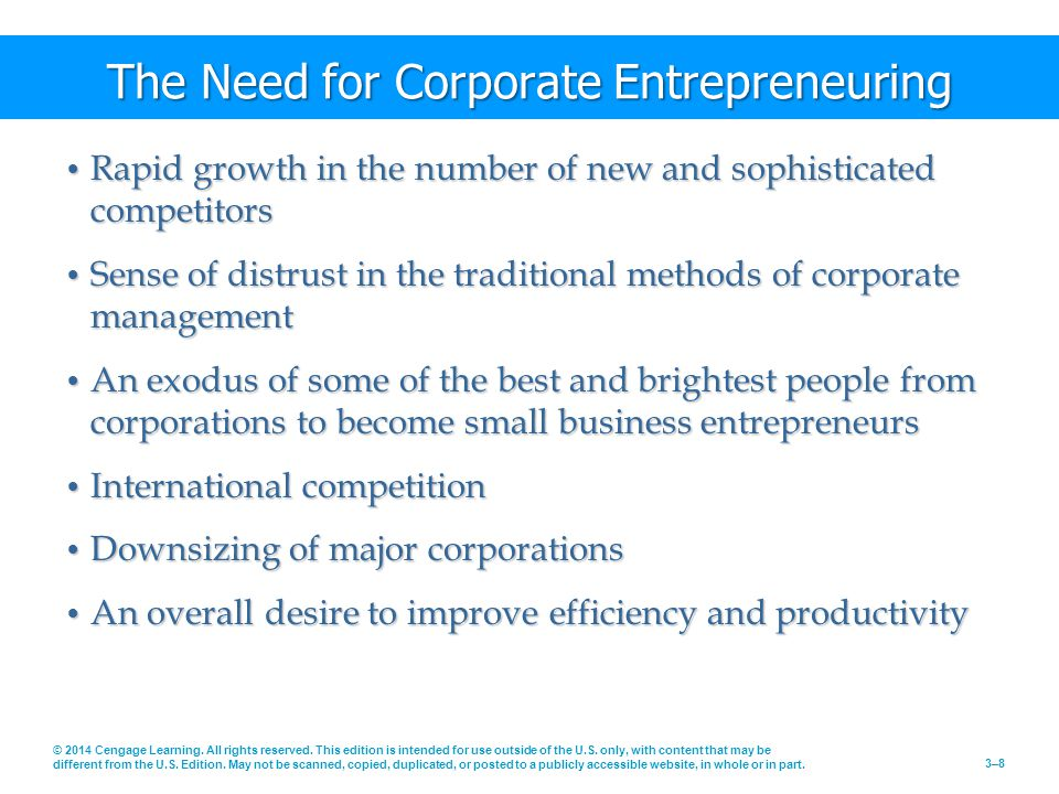 The Need for Corporate Entrepreneuring