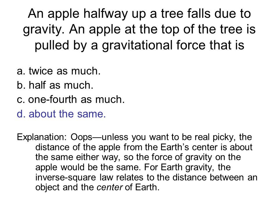An apple halfway up a tree falls due to gravity