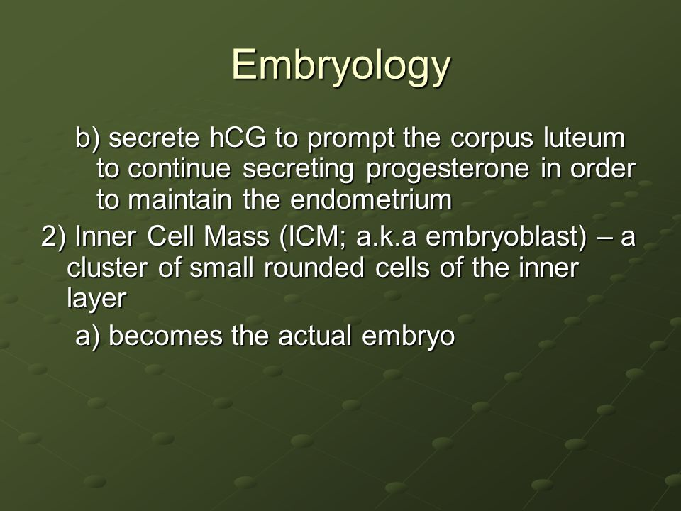 Embryology b) secrete hCG to prompt the corpus luteum to continue secreting progesterone in order to maintain the endometrium.