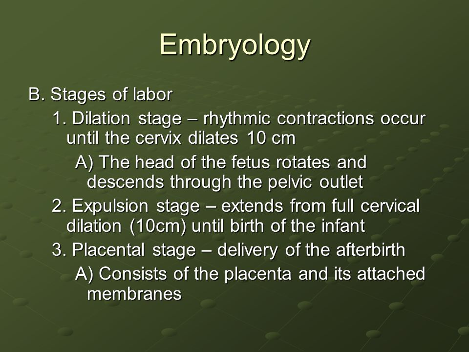 Embryology B. Stages of labor