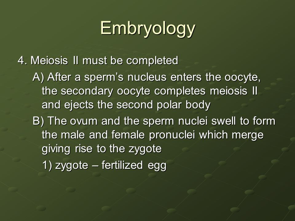 Embryology 4. Meiosis II must be completed