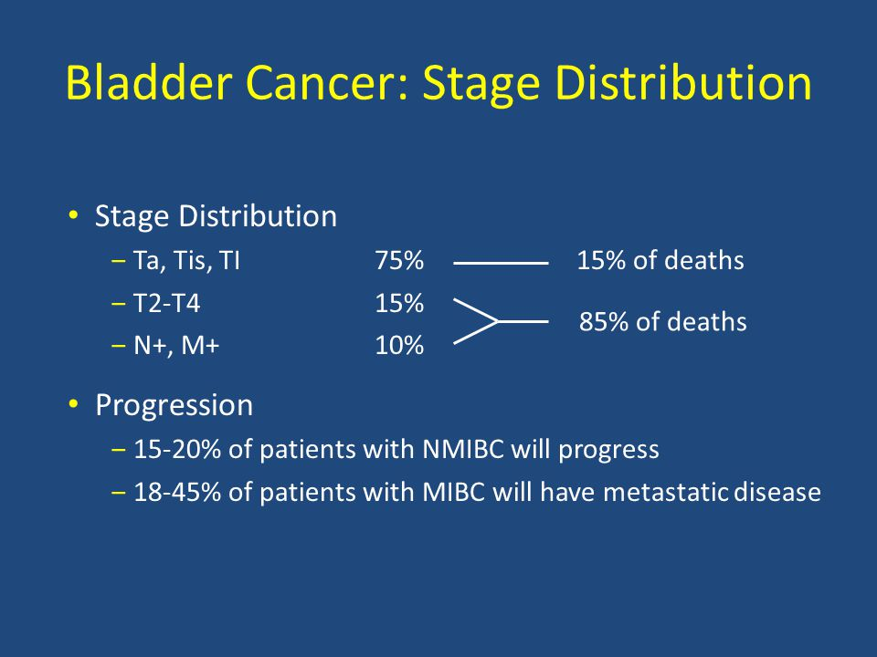 Bladder Cancer: Stage Distribution