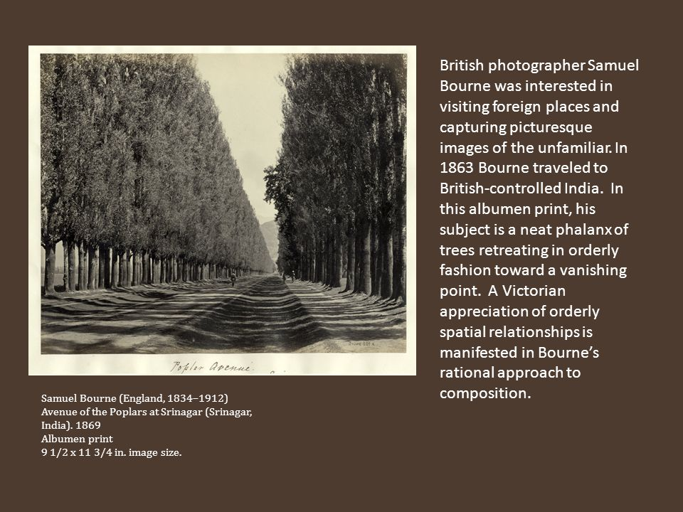 British photographer Samuel Bourne was interested in visiting foreign places and capturing picturesque images of the unfamiliar. In 1863 Bourne traveled to British-controlled India. In this albumen print, his subject is a neat phalanx of trees retreating in orderly fashion toward a vanishing point. A Victorian appreciation of orderly spatial relationships is manifested in Bourne's rational approach to composition.